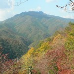 Nov. 23 (Sat.) Autumn Recreation Hike & Maple Planting on Mt. Ogura, Kyoto