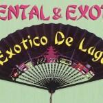 Exotico De Lago – Live @ Kinse Ryokan, Kyoto; 11th December 2015